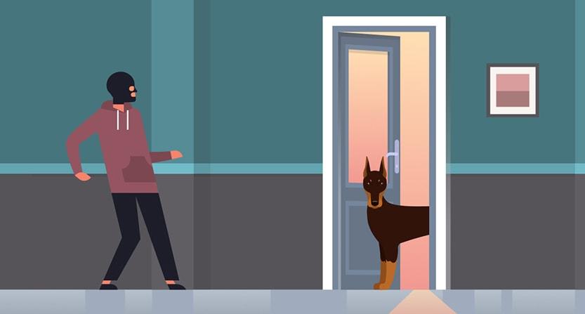 Get-a-Guard-Dog