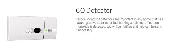 CO Detector CPI