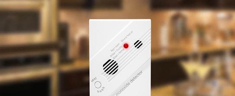 Guardian Carbon Monoxide