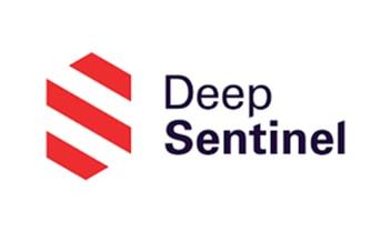 deepsentinel-main-logo