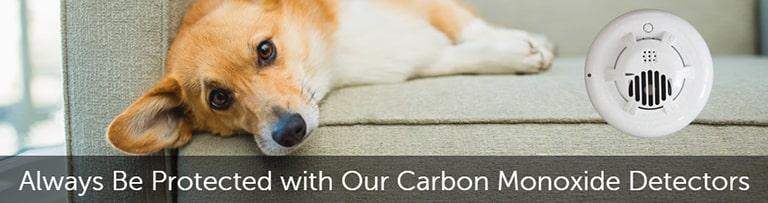 Carbon Monoxide Protection One