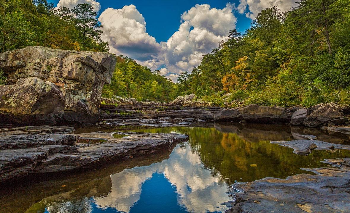 Alabama Nature