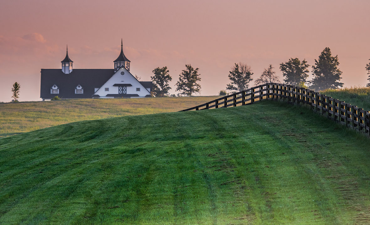 Kentucky Black Fence Leads
